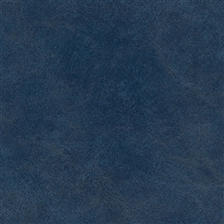 WAS-9862 Dark Blue