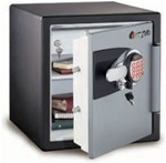 Sentry Safe Fire Safe Electronic Safe Model OA3821