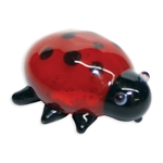 Dotty the LadyBug