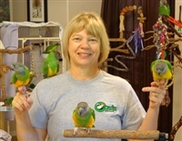 Ginger's Parrot Rescue Wish List