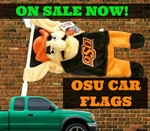 OSU CAR FLAG