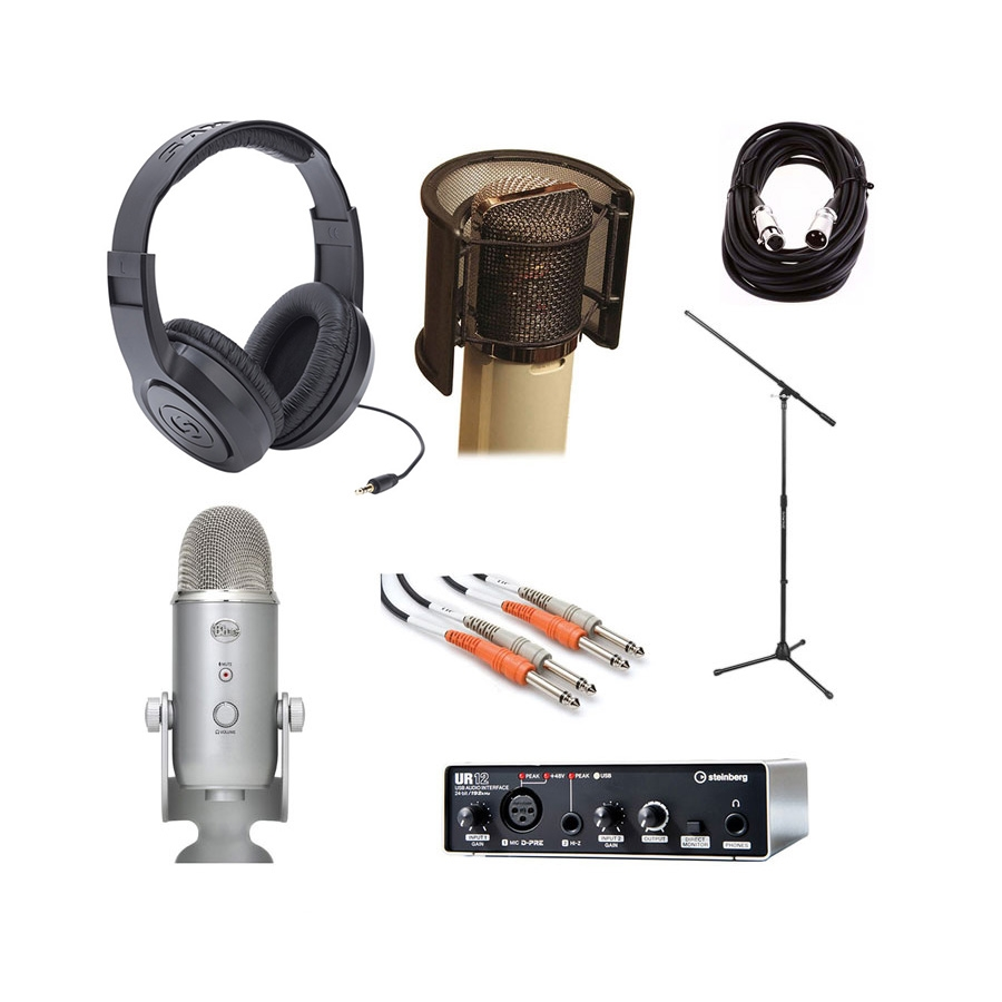 Steinberg UR12 USB Audio Interface with Headphone, Microphone, Mic Stand,  Pop Filter, Dual TRS Cable and XLR Cable