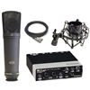 Steinberg UR22 2x2 USB 2.0 Audio Interface with Microphone, Shock Mount and Cable