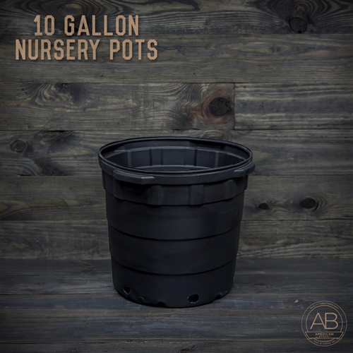American Bonsai Plastic Nursery Pot: 10 Gallon