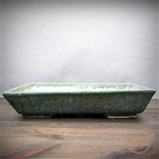 "Hand Thrown Bonsai Pot: 10.75"" x 7.5"" x 1.75"""