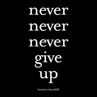 Never Never Never Give Up magnet by Quotable