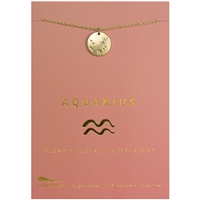 Lucky Feather Aquarius Zodiac Necklace