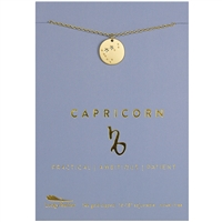 Lucky Feather Capricorn Zodiac Necklace