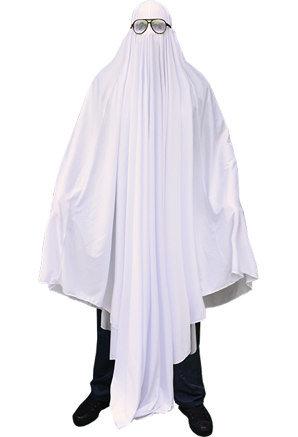 HALLOWEEN - MICHAEL MYERS GHOST COSTUME TRICK OR TREAT