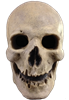Antique Skull Halloween Mask