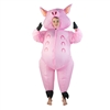 Kids Inflatable Pig  Costume One Size Fits All Kids