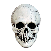 Nightowl Skull - White