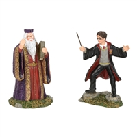 Harry Potter Harry And The Headmaster   Collectible figurine statue