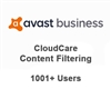 Avast Business CloudCare Content Filtering 1 Year Users (1001+)