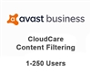 Avast Business CloudCare Content Filtering 3 Year Users (1-250)