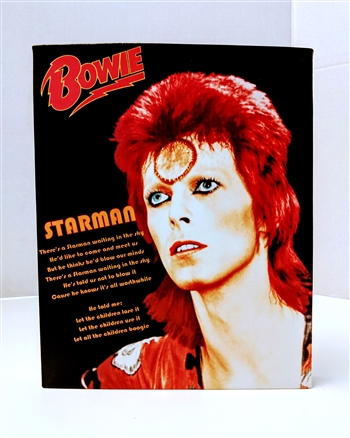 "DAVID BOWIE ""Starman"" Ziggy Stardust 8x10 canvas print wall art Rock n Roll collectible"