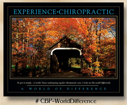 World of Difference: Experience Chiropractic 22 x 28 (non-laminated)