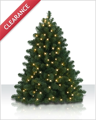 4 foot Bethlehem Fir Clear Christmas Tree