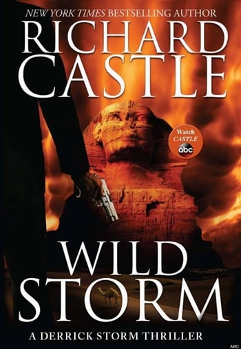 Wild Storm by Richard Castle