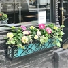 "30"" Savannah Wrought Iron Window Box With Ornamental Scroll Work"