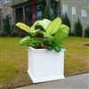 "18"" x 18"" x 18"" Charleston Self Watering Square PVC Planter With Decorative Trim"