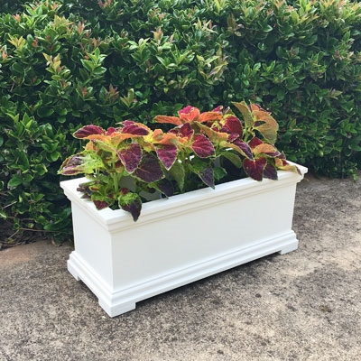 "72"" Charleston Self Watering Decorative Rectangular Planter"
