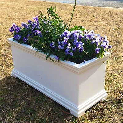 "24"" Charleston Self Watering Decorative Rectangular Planter"