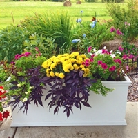 "24"" x 15"" x 48"" Charleston Extra Large PVC Outdoor Planter"