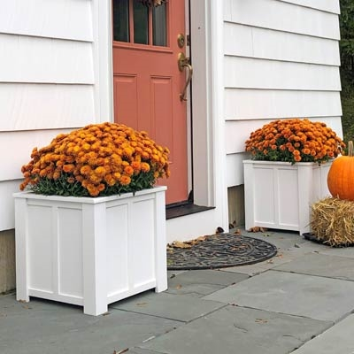 "12"" x 12"" x 12"" Daisy Decorative Square PVC Planter With Vertical And Horizontal Trim"