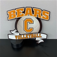Central Bears Volleyball