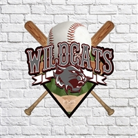 Mount Vernon High School Baseball