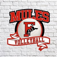 FCHS Mules High School Volleyball