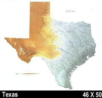 Texas Shade Relief Map