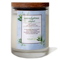 Eucalyptus Mint Glass Soy Candle