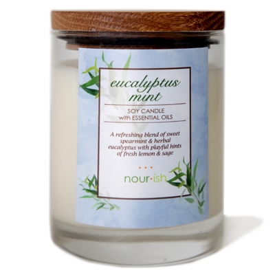 Eucalyptus Mint Large Soy Candle