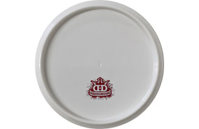 Dynamic Discs Fuzion EMAC Truth (Blank Canvas)