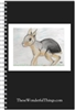 Patagonian Cavy Journal