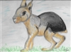 """Patagonian Cavy"" Zoo Print"