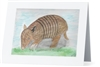 """Armadillo"" Note Cards"