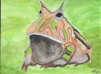 """Argentine Horned  Frog"" Zoo Print"