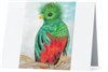 """Quetzal"" Note Cards"