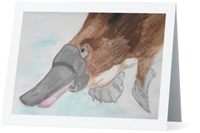 """ Platypus"" Note Cards"