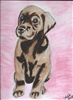 """Chocolate Lab Pup"" Zoo Print"