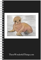 Sea Lion Journal