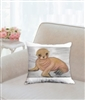 """Sea Lion"" Throw Pillow"