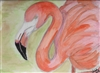 """Flamingo"" Zoo Print"