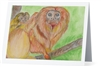 """Golden Lion Tamarin"" Note Cards"