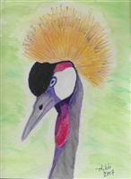 """Gray Crowned Crane"" Zoo Print"