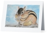"""Chipmunk"" Note Cards"