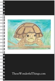 African Spurred Tortoise Journal